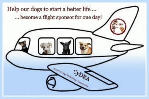Flight Sponsorship2
