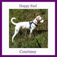 Happy Ending Courtney