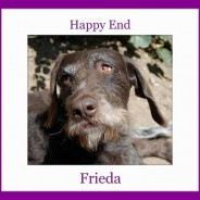 Happy End of Frieda formerly Sandra