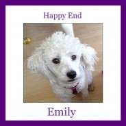 Happy End of Emily